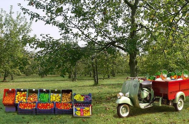 Vendita diretta su area privata imprenditore agricolo