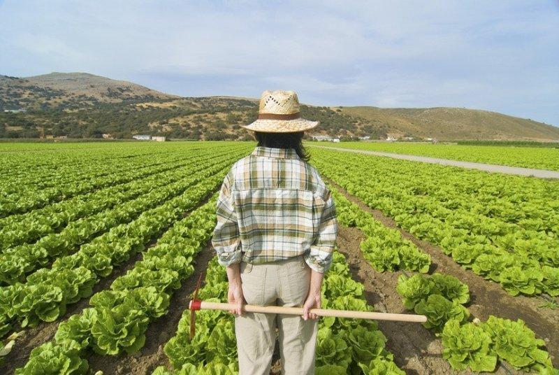 Corso  IAP – Imprenditore agricolo professionale