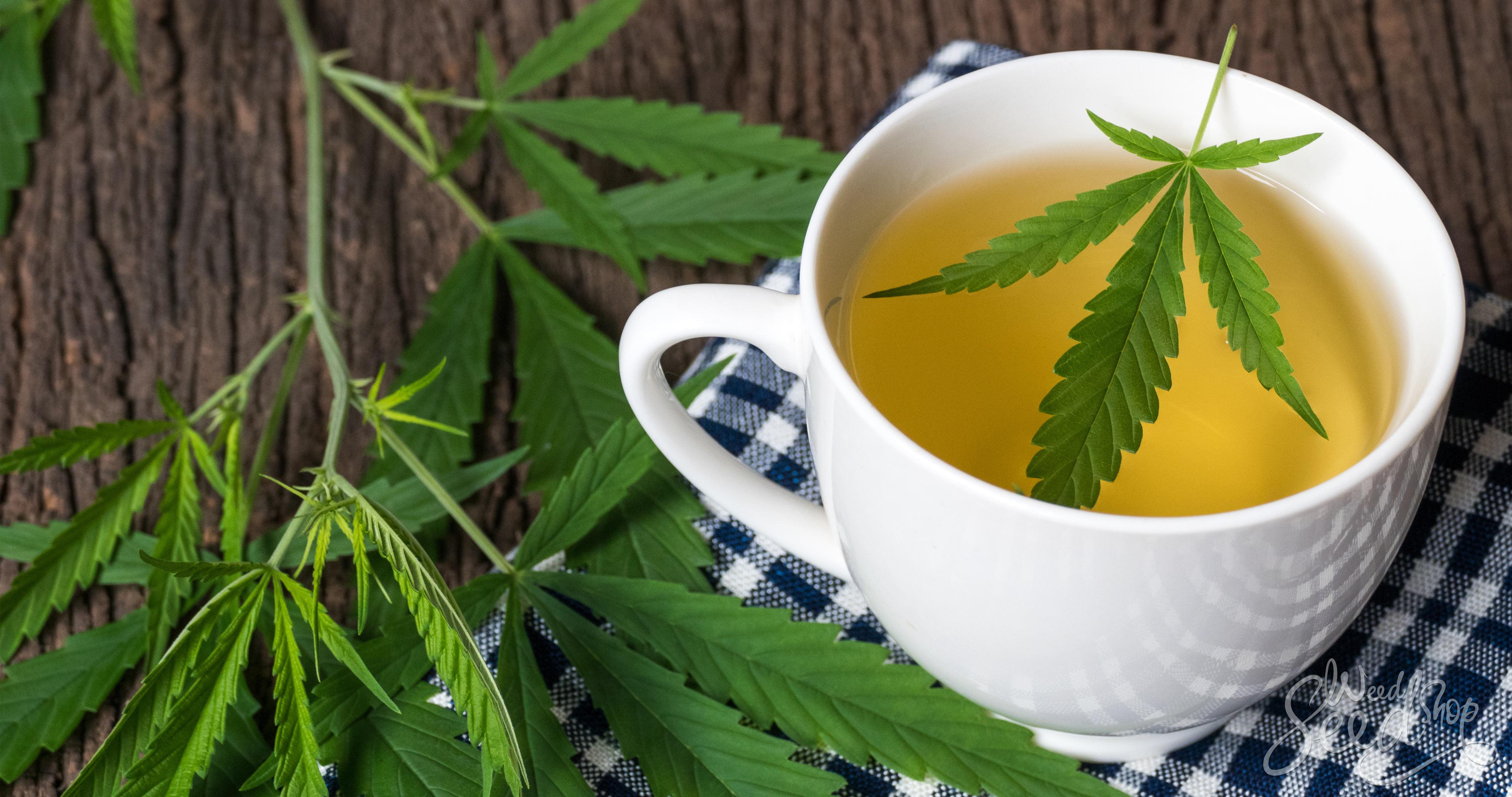 Somministrazione di prodotti a base di cannabis a scopo terapeutico